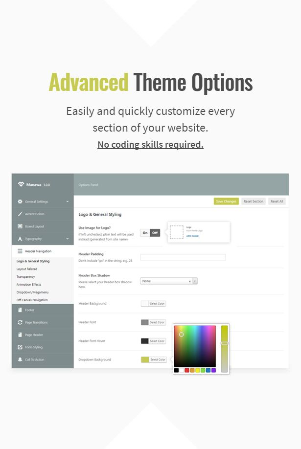 advanced-theme-options-showcase.jpg