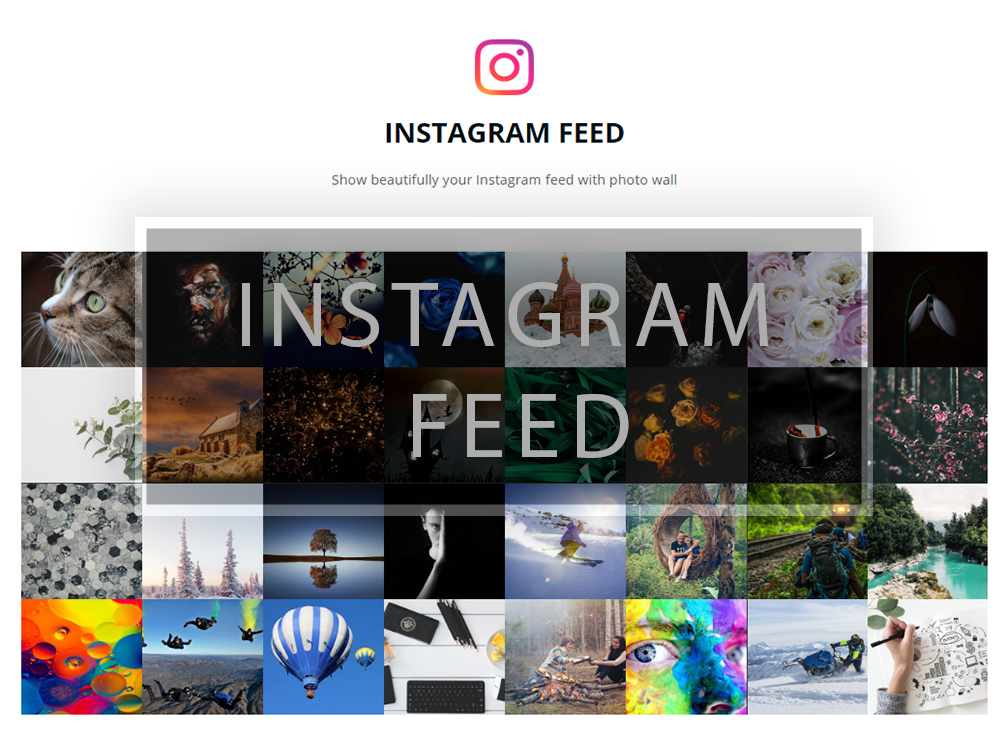 instagram-feed-h81nd.png%3Ffit%3D1008%25