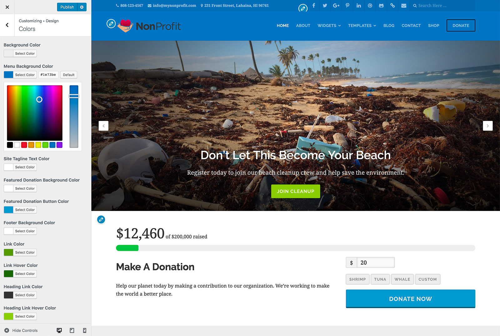 nonprofit-theme-customizer-abau3.jpg