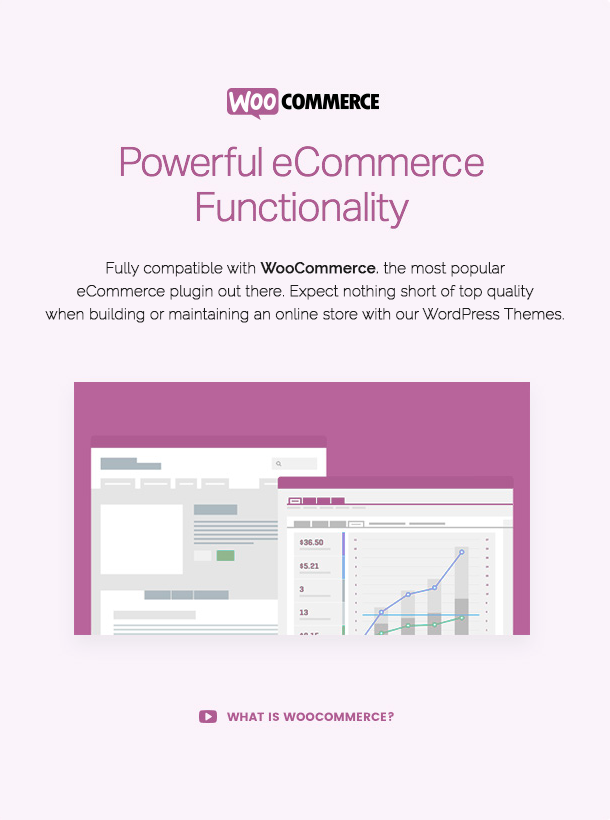 presentation-woocommerce-yxaXE.png