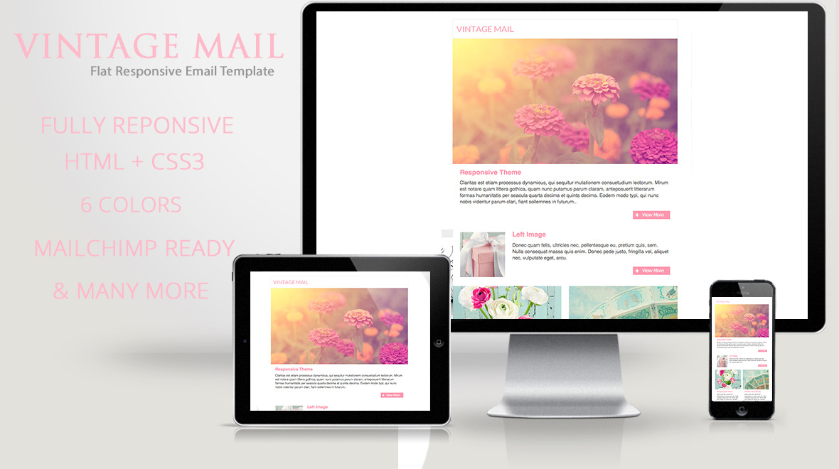 Vintage  Mail  Vintage Responsive Email Template  Themes