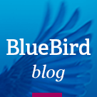 BlueBird – Beautiful WordPress Theme for Personal Blog
