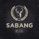 Sabang - Grid Blog WordPress Theme