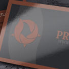 Project Business Card