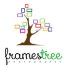 Frames Tree Photography