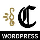 Caspian WordPress Multi-Blog Theme