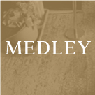 Medley - A Beautiful WordPress Blogging Theme