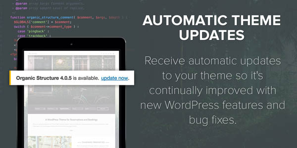 theme-automatic-updates.jpg