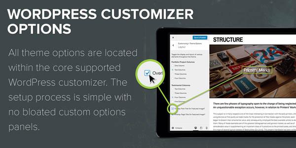theme-feature-customizer-options-structu