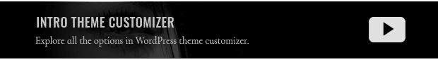 theme_customizer.png