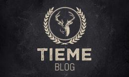 Tieme - Responsive Timeline WordPress Blog