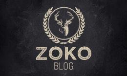 Zoko - Clean Responsive Blogging  WordPress Theme
