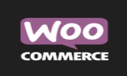 Install WordPress Theme & Integrate WooCommerce