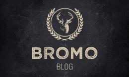 Bromo -Grid Blog WordPress Theme