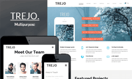 Trejo – Multipurpose Responsive One Page WordPress Theme