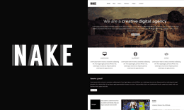 Nake - Clean & Minimal WordPress Theme