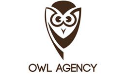 Owl Agency Logo Template