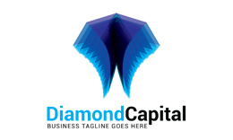 Diamond Capital Logo