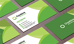 Exclusive Business Card_029