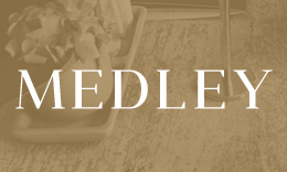 Medley - A Beautiful WordPress Blogging Theme
