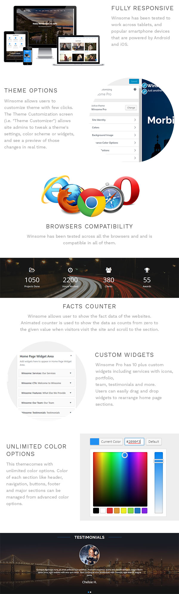 Winsome pro one page parallax wordpress theme themes for Wordpress subcategory template